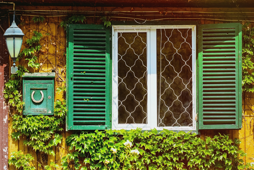 a picture of green Outdoor Window Shutters in Sydney