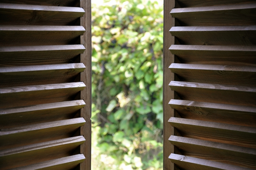 Timber blinds online, Image by Shutters Australia