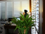 plantation-shutter-home-office-5356