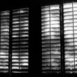 Image of a high quality Exterior Plantation Shutters