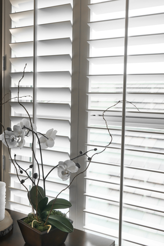 a picture of Plantation Shutters in Sydney