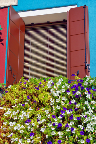 shutters bought after considering prices of aluminium shutters in Sydney, Image by Shutters Australia