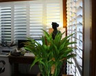 Image of Plantation Shutters for your Sydney Home
